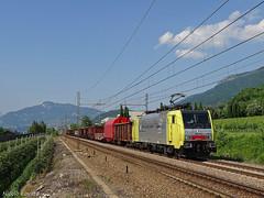 Canarina per Brescia (nlovato96) Tags: rtc lokomotion siemens e189 903 es64f4 schrotterzug rottami munich nord rbf brennerbahn brenner brescia mattarello canarina