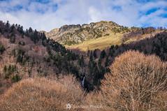 El límite del bosque (SantiMB.Photos) Tags: 2blog 2tumblr 2ig artigadelin esbòrdes valldaran valdaran otoño autumn montañas mountains pirineos pyrenees lleida bosque forest cascada waterfall geo:lat=4267828408 geo:lon=070665105 geotagged bordeses cataluna españa