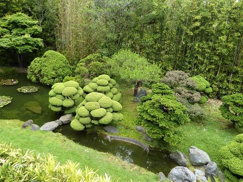 San Francisco, CA, Golden Gate Park, Japanese Tea Garden