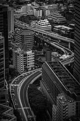 Shinjuku's Highway (Toine B.) Tags: shinjuku tokyo bnw nb noiretblanc japon highway asia blackandwhite architecture city japan