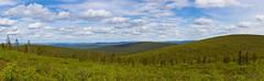 Kuotmuttipäällä (mustohe) Tags: 2019 finland lappi ukk ukkkansallispuisto urhokekkosenkansallispuisto urhokekkonennationalpark kansallispuisto nationalpark kesä summer canon hugin panorama tunturi fells