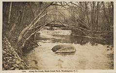 Rock Creek (1920s) (StreetsofWashington) Tags: rockcreekpark fords footbridges postcards washington washingtondc