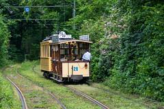 Old tram ride. (Azariel01) Tags: 2019 belgique belgium brussels bruxelles rails tracks voies tram old historic historique mtub msvb stib mivb forêtdesoignes zoniënwoud