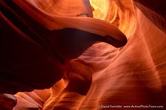 Imagination (David Swindler (ActionPhotoTours.com)) Tags: arizona southwest utah canyon desert formation sandstone slotcanyon slotcanyons