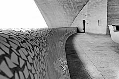 mosaic and curves (christikren) Tags: architecture abstract art absoluteblackandwhite building christikren architectsantiagocalatrava linescurves monochrome canon photography teneriffa santacruzdetenerife concrete auditorio spain contemporary