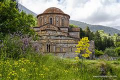 A church in Mystras (doveoggi) Tags: travel greece mystras flowers church 8974