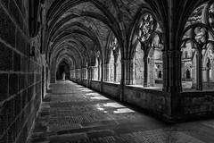 Monasterio  Irantzu, claustro (tonygimenez) Tags: