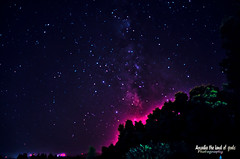 The nightsky over the Tripolis of Arcadia. (Elias Chris) Tags: nightsky tree tripolisarcadia tripolisgreece arcadia arkadia arcadiagreece sky night nikon nikond5100 ελλάδα τρίπολη greece