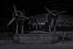 Pegasus (horsepowers) (michael_hamburg69) Tags: schleswigholstein büdelsdorf carlshütte kunst art nordart 2019 sculpture skulptur künstler artist sculptor davidčerný