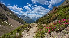 mountain spring (++sepp++) Tags: landscape landschaft gries austria tirol österreich hiking sunny sonnig wandern ötztal tyrol alpenrose längenfeld landschaftsfotografie