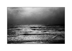 Lorient, route côtière (Punkrocker*) Tags: nikon fm2n nikkor preai 50mm 5014 film kodak trix 400 nb bnw bwfp monochrom sea mer ocean wave lorient ploemeur morbihan bretagne brittany breizh france
