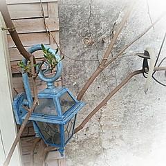 Volute - Café La Fée (Ladyhelen_) Tags: colors blue volute olomouc cafelafee words poetry quotes poems verses art