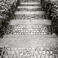 "Up or down <a style=""margin-left:10px; font-size:0.8em;"" href=""http://www.flickr.com/photos/36842942@N03/48234352837/"" target=""_blank"">@flickr</a>"