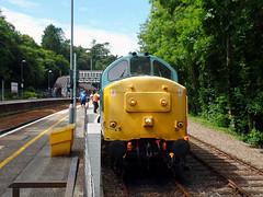37142 Bodmin Parkway (1) (Marky7890) Tags: 37142 class37 bodminparkway bodminwenfordrailway cornwall heritage diesellocomotive