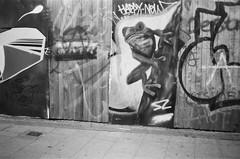 ot35 - tree frog (johnnytakespictures) Tags: olympus trip35 olympustrip hp5plus ilford ilfordhp5plus film analogue expired expiredfilm blackandwhite bw birmingham digbeth city street urban graffiti art paint streetart dartfrog frog animal amphibian reptile wildlife summer