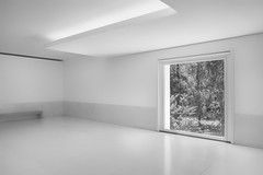 Framing Nature (Ger208k) Tags: portugal porto museuserralves architecture museum contemporaryart framing window nature highkey monochrome blackandwhite gerardmcgrath fuji xpro1 trees foliage