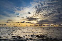 Waarde (Omroep Zeeland) Tags: westerschelde waarde wolken wolkenlucht wolkenvelden zonsondergang sunset