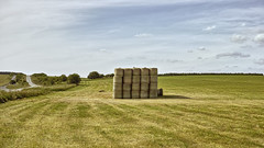 A Stack of Hay (stevedewey2000) Tags: wiltshire salisburyplain sigmadp2 merrill landscape haybale hay countryside stack agriculture summer 169 netheravon