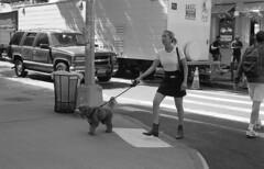 7xi-0701-028 (stephen sherman) Tags: film kentmere400 minolta7xl newyorkcity manhattan soho bnw