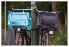 Friends (leo.roos) Tags: lens fiets meye 1936 a7 moviecamera darosa cinelens cmount trioplan10028 leoroos meyertrioplan10cm128 lamp bicycle basket cyan mand krat truquoise bike
