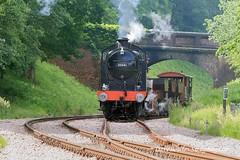 19.06.15_0347-Bluebell-Road-Rail (Dangerous44) Tags: hclass 263 o165 qclass 30541 standard5 73083 camelot bluebell railway goods