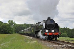 15th June 2019. Road & Rail at the Bluebell (Dangerous44) Tags: hclass 263 o165 qclass 30541 standard5 73083 camelot bluebell railway goods
