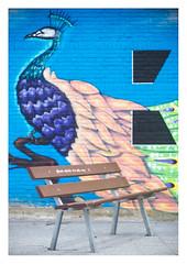 Bench and mural (leo.roos) Tags: mural straatkunst streetart muurschildering wallart muralism graffiti transformatorhuisje transformersubstation distributionsubstation thehague denhaag sportlaan daalenbergselaan bench colo kunst lens bank bank1 bankleeg a7 meyertrioplan10cm128 1936 trioplan10028 cmount cinelens moviecamera darosa leoroos graphitti grafitti graphiti