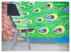 Have a seat (leo.roos) Tags: mural straatkunst streetart muurschildering wallart muralism graffiti transformatorhuisje transformersubstation distributionsubstation thehague denhaag sportlaan daalenbergselaan arty bank bank1 bankleeg groe groen patro repe curv muurwerk a7 meyertrioplan10cm128 1936 trioplan10028 cmount cinelens moviecamera darosa leoroos graphitti grafitti graphiti