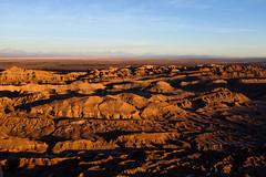 DSCF2069 (LpVano) Tags: atacama moonvalley chile desert sunset landscape coyote