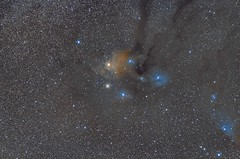 Antares and rho Ophiuchi Cloud Complex (rvr) Tags: antares scorpius rhooph astrophotography skywatcher azgti canon 100d samyang pixinsight