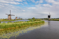 Kinderdijk (Jill Clardy) Tags: cruise rhine viking river alblasserdam southholland netherlands 201906039l8a5883 kinderdijk dike windmills pond reeds spring day bicyclist path polder pump water reflection