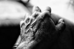 My Left Hand (Carlos A. Aviles) Tags: blackandwhite blancoynegro monochrome hand fingers dedos mano left izquierda extremity extremidad