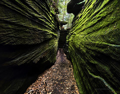 Ledges trail Cuyahoga Valley (Valley Imagery) Tags: ledges trail cuyahoga valley national park ohio sony a99ii tamron 1530