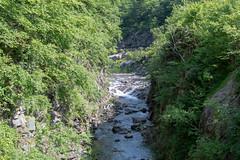 quabbinreservoir2019-158 (gtxjimmy) Tags: nikond7500 nikon d7500 tamron 18400mm quabbinreservoir ware belchertown massachusetts newengland summer