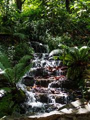 Jardín Botánico. Bogotá, Julio de 2019 (Carlos Ardila) Tags: jardínbotánico bogotá colombia 2019 julio cascada agua verde green naturaleza
