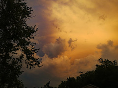 Yellow Sky. (dccradio) Tags: lumberton nc northcarolina robesoncounty outdoor outdoors outside sky eveningsky sunset yellowsky tree trees foliage branch branches treebranch treebranches godshandiwork godscreation cloud clouds stormclouds monday evening mondayevening summer summertime july canon powershot elph 520hs photooftheday photo365 project365 nature natural scenic landscape beauty beautiful pretty