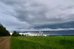 Storm Season (faithroxy) Tags: storm farm field shelf cloud clouds stormy stormscape roll weather severeweather nikon spruce grove alberta canada 14mm rokinon skywatcher sky