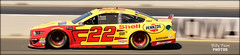 Joey Logano – #22 Team Penske / Ford (billypoonphotos) Tags: raceway nascar 2019 toyota nikkor speed shutter slow 18140mm mm 18140 d5500 outdoor sport vehicle car race racing auto california course road francisco san picture photo news nikon bio billypoonphotos billypoon area bay prix grand sonoma point sears winner penske ford logano joey shell pennzoil
