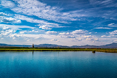 20190706-Fly Ranch--60.jpg (LucaFoto!) Tags: flyranch foto images hotsprings blackrock luclucafotocom gerlach lucafoto camping photography nevada fotography best quality water explore willsgeyser black rock