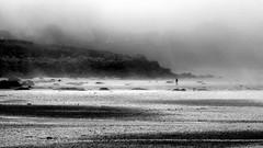 Fog in July - Portsall (patrick_milan) Tags: fog brume portsall ploudalmezeau landunvez kersaint finistere bretagne brouillard