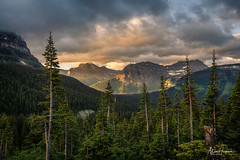 Going-to-the-Sun Road (Marc Haegeman Photography) Tags: glaciernationalpark montana usa americanwest rockymountains rockies nature landscapephotographybymarchaegeman marchaegemanphotography nikond850 scenic wild rugged trees goingtothesunroad