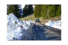 Little snow walls beside the road at the end of May (balu51) Tags: wanderung heimweg schnee graubünden surselva mai 2019 copyrightbybalu51