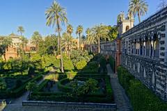 Royal Alcázar (- Ozymandias -) Tags: sevilla andalucía españa spain europa europe seville alcázar reinodeespaña ευρώπη ισπανία σεβίλλη βασίλειοτησισπανίασ ανδαλουσία αλκάθαρ explore