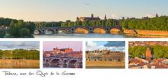 21,5x10cm // Réf : 10030761 // Toulouse