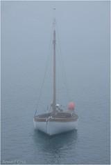 L'attente (Photos de voyages, d'expéditions et de reportages) Tags: bateaux atlantique finistère fog brittany breizh bretagne leconquet brume france