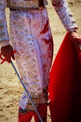 sangre (aficion2012) Tags: doña maría cascón novillada raso de portillo aquilino girón corrida novillero novillo bull bullfight cor sangre blood francia france tauromachie tauromaquia giron torero toro taureau sang