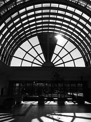 Atrium Sunlight 2 (sjrankin) Tags: 9july2019 edited kitahiroshima hokkaido japan grayscale atrium sun sunlight kitahiroshimaeki kitahiroshimastation jrhokkaido window ceiling