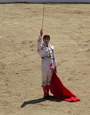 saludo (aficion2012) Tags: doña maría cascón novillada raso de portillo aquilino girón saludo corrida novillero novillo bull bullfight cor francia france tauromachie tauromaquia giron torero toro taureau