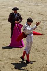 honor al toro (aficion2012) Tags: doña maría cascón novillada raso de portillo aquilino girón corrida novillero novillo bull bullfight cor francia france tauromachie tauromaquia giron torero toro taureau