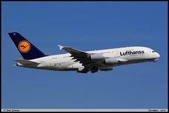 AIRBUS A380 841 Lufthansa D-AIMM 175 Frankfurt juin 2019 (paulschaller67) Tags: airbus a380 841 lufthansa daimm 175 frankfurt juin 2019